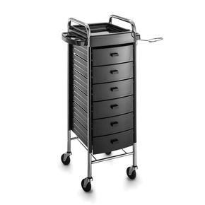 Professional cart with six shelves